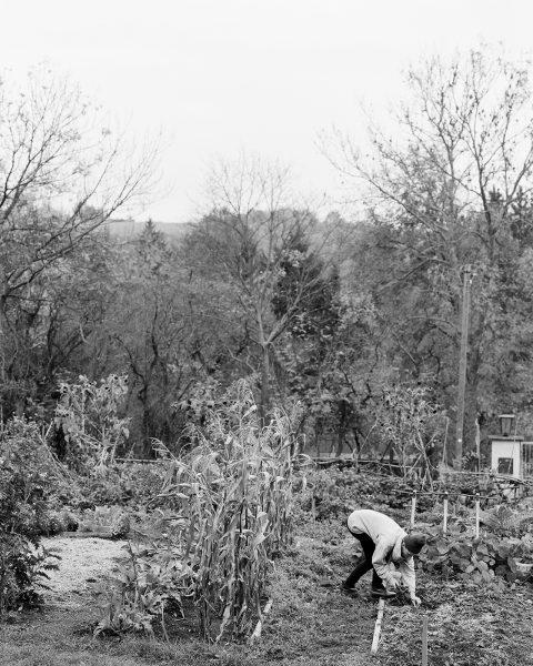 20141112_Der-Gartenfreund_01_01-001